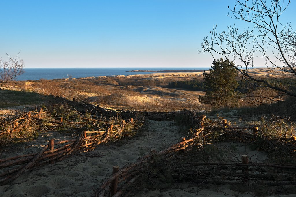 Sand Dunes on Curonian Spit