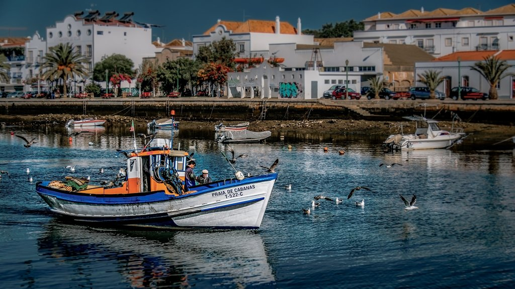 Old fishing towns in the Algarve
