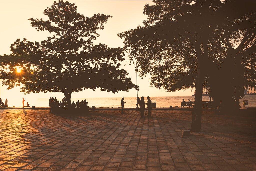 Farewell Kochi