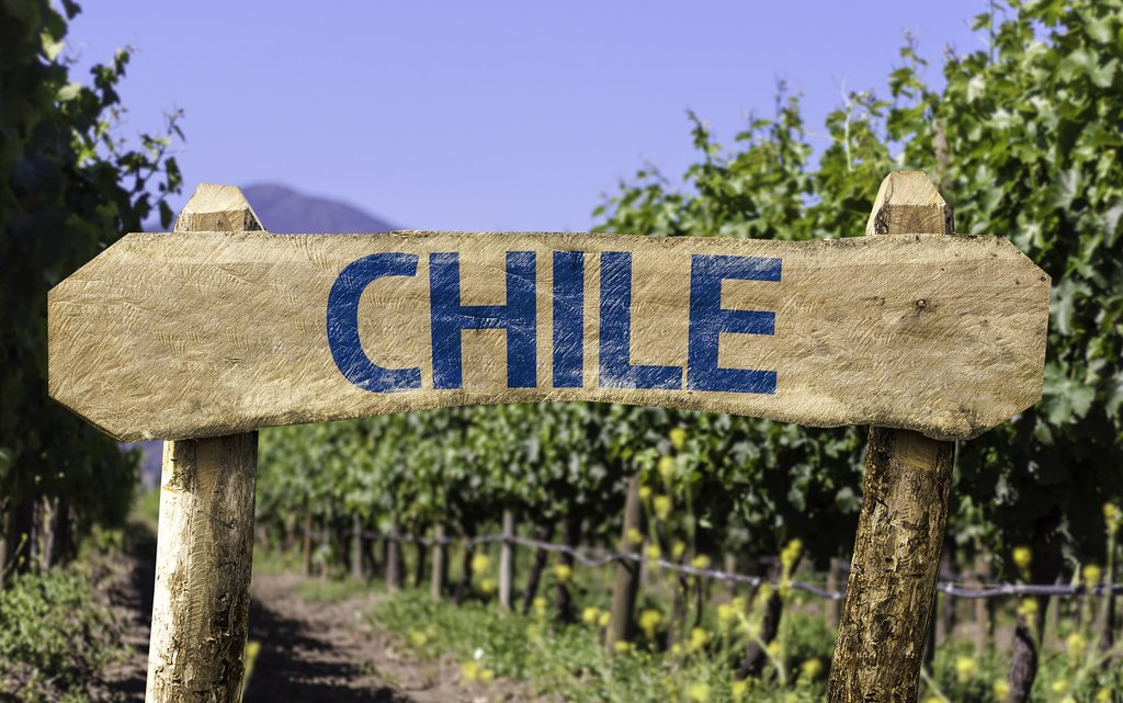 Time for wine tasting in Chile!