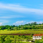 Scenic view at marble landscape in central Istria