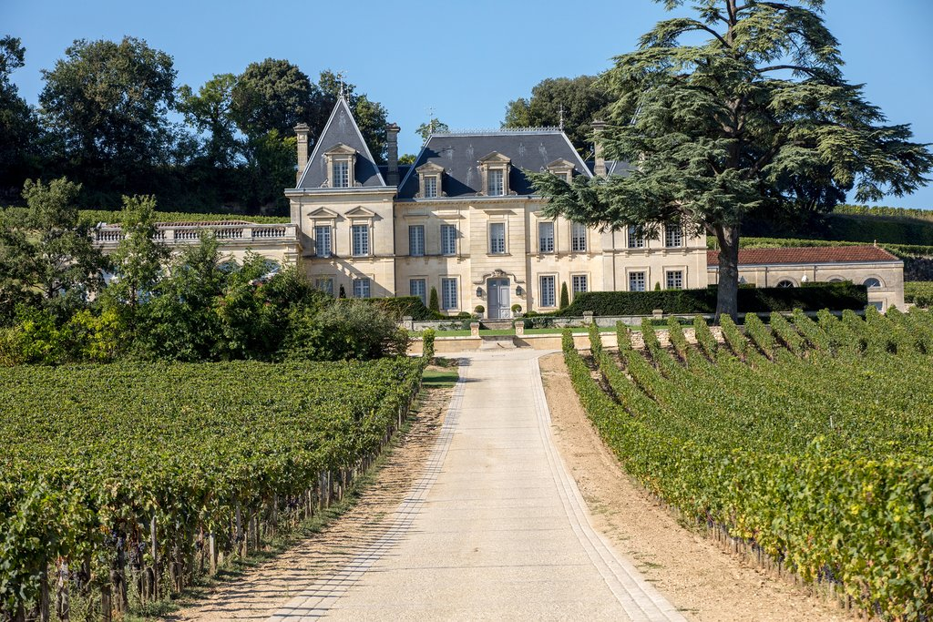 A wine estate in Saint Emilion