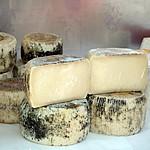 Distinct Cretan graviera cheese