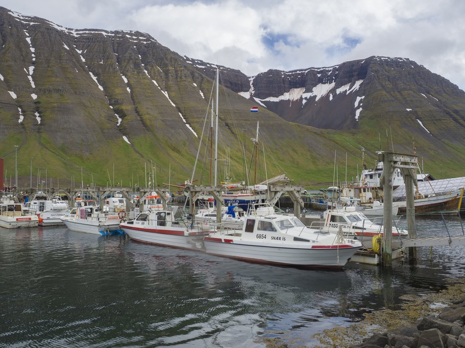 Return to Isafjordur by boat
