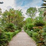 Pisa Botanical Gardens