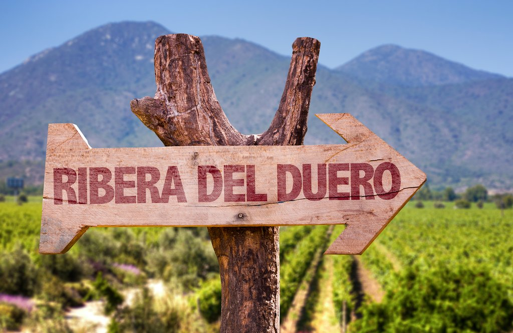 Onward to Ribera del Duero wine country