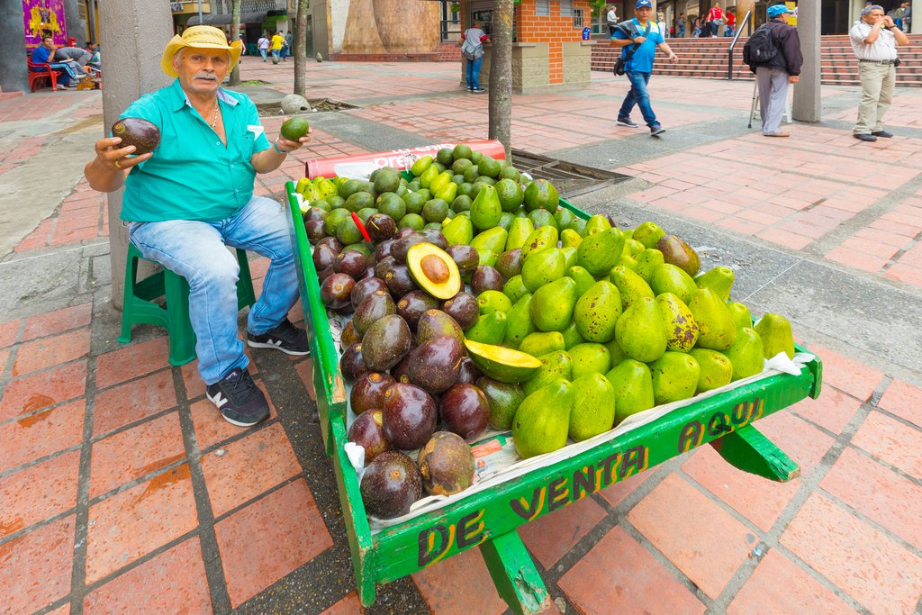 Avocado local vendor and street food tasting