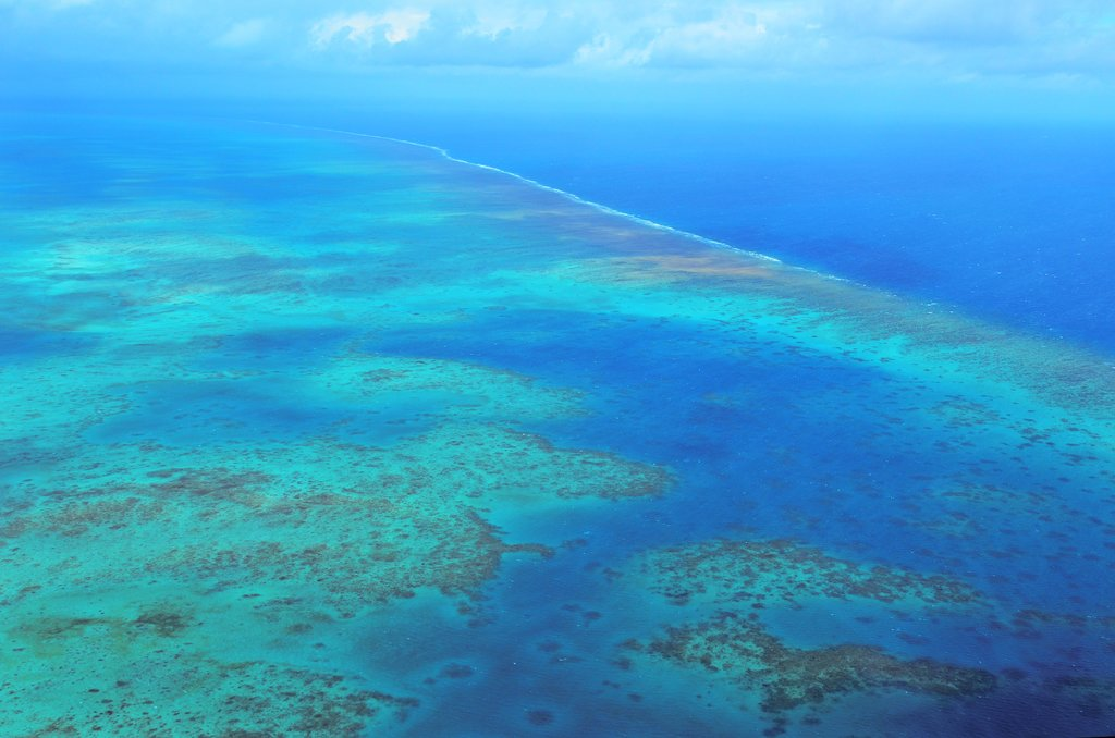 The Great Barrier Reef off Cairns, Australia