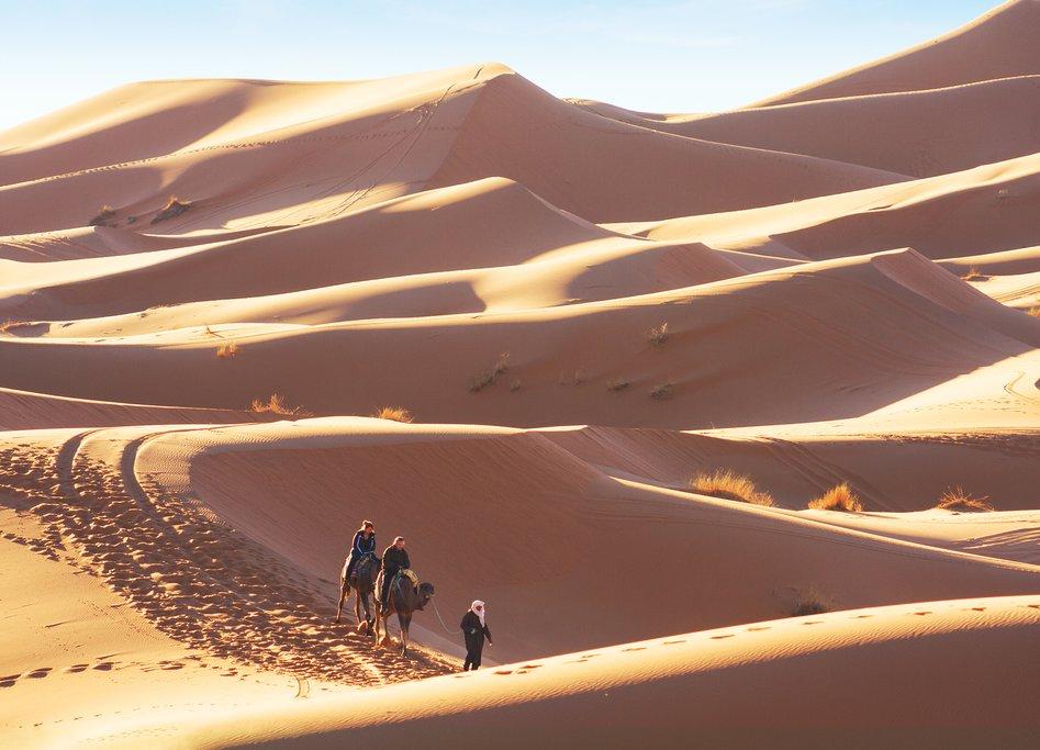 Sunny trek on camels through Erg Chebbi, near Merzouga, Morocco