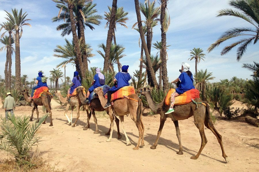 Explore Morocco with the Entire Family