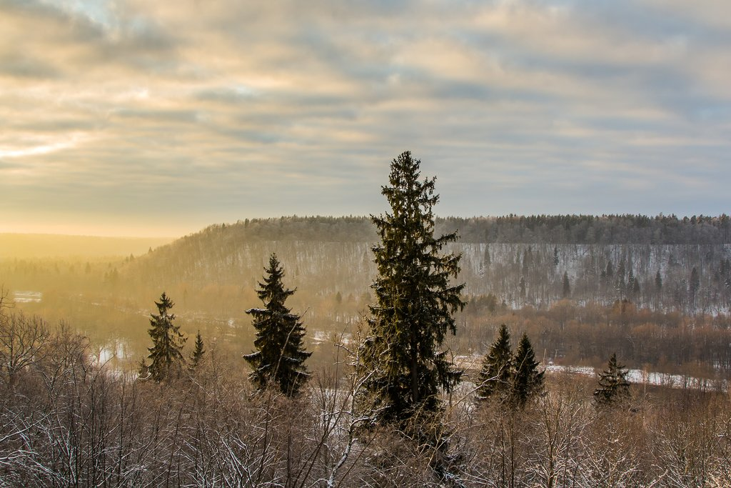 The Gauja Valley in winter