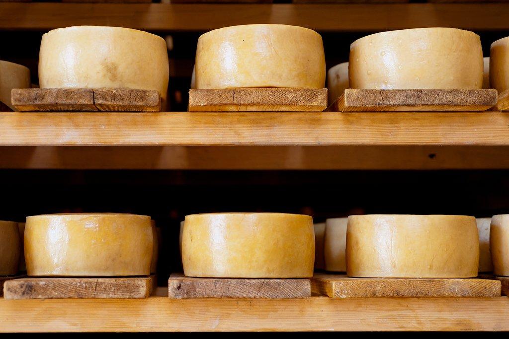 Paški sir, Croatia's celebrated cheese from Pag Island