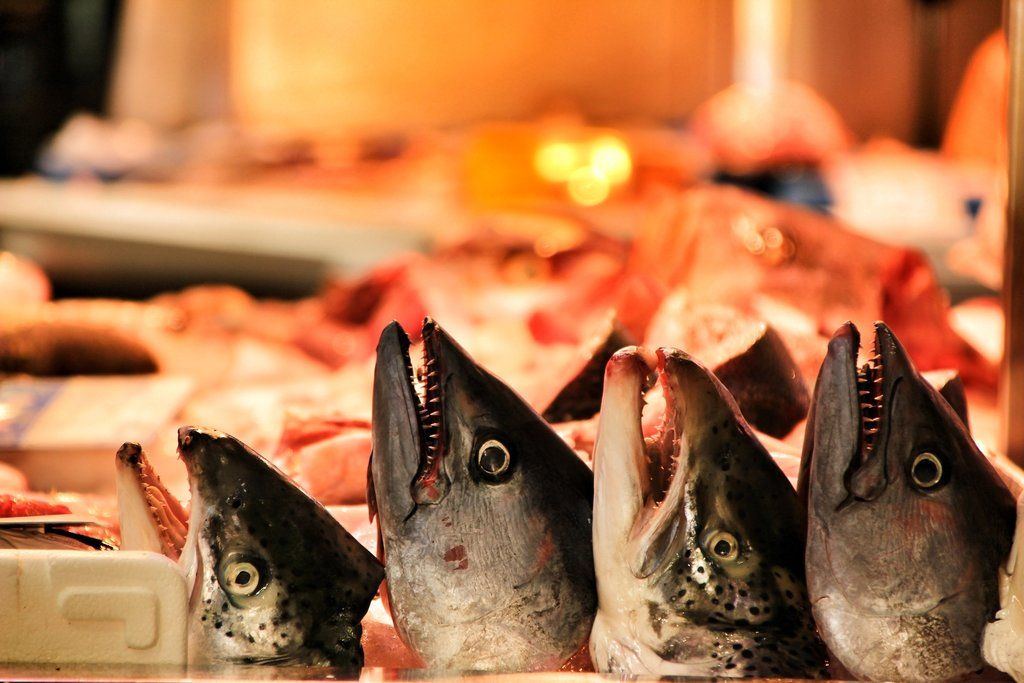 https://www.bigstockphoto.com/image-313822351/stock-photo-fresh-fish-for-sale-at-a-market-stall-in-cartagena%2C-murcia