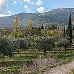 Landscape of Luberon