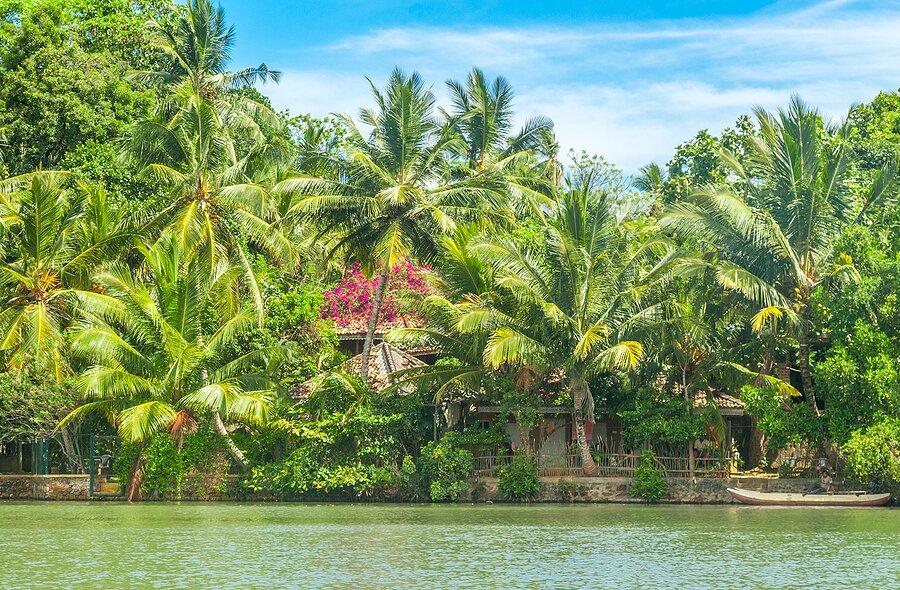 Koggala Lake in Sri Lanka