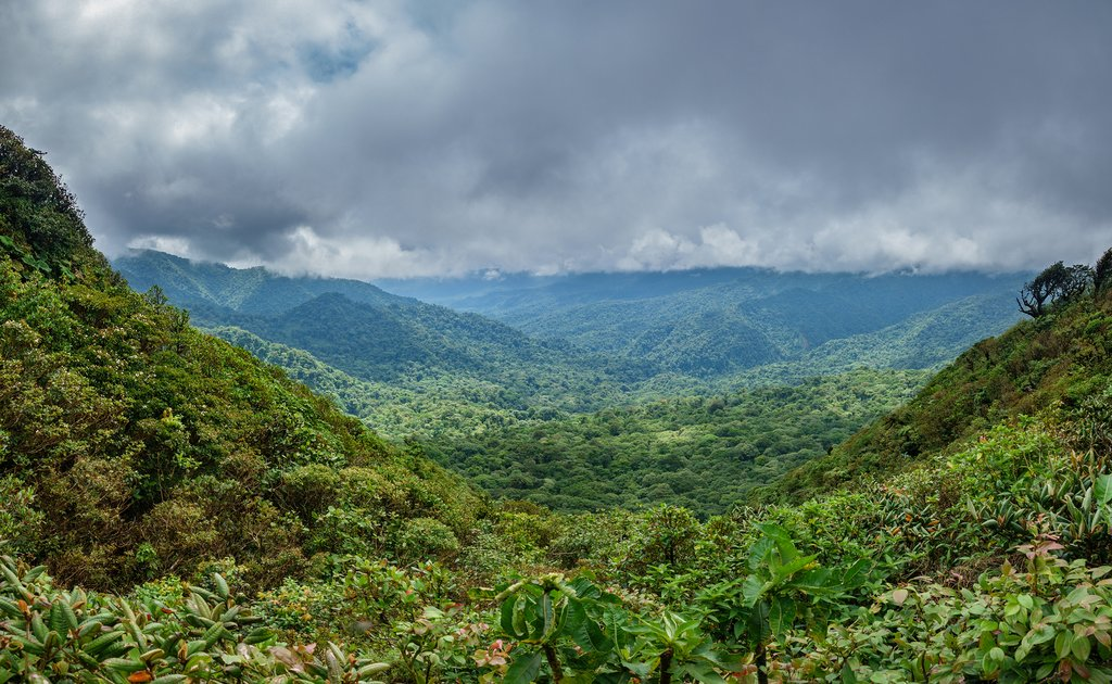 Valley in the mountainous jungles of Costa Rica