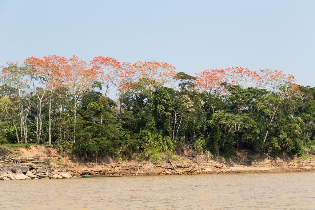A variety of colors on the Madre de Dios River