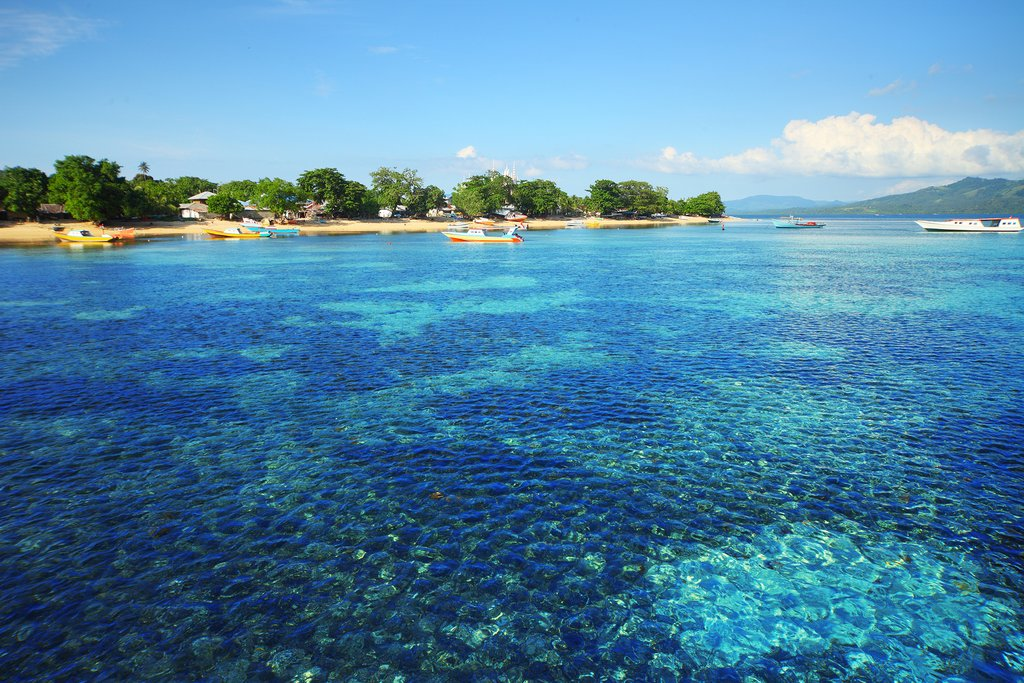 North Sulawesi, Indonesia - Coral reef in Bunaken national park