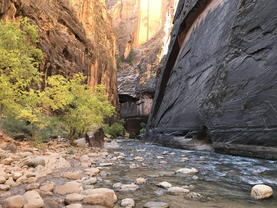 Zion National Park's Riverside walk