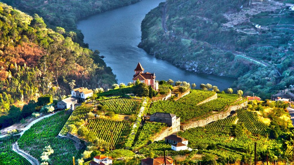 The stunning Douro Valley
