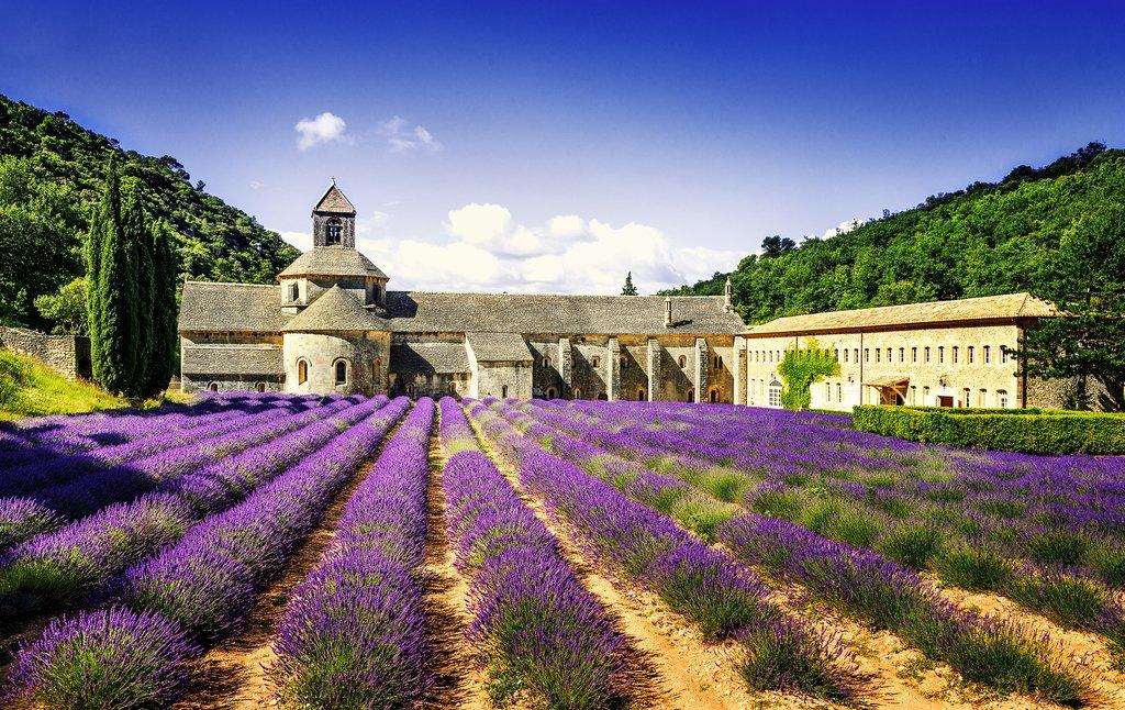 Abbaye Notre-Dame de Sénanque, Gordes, France
