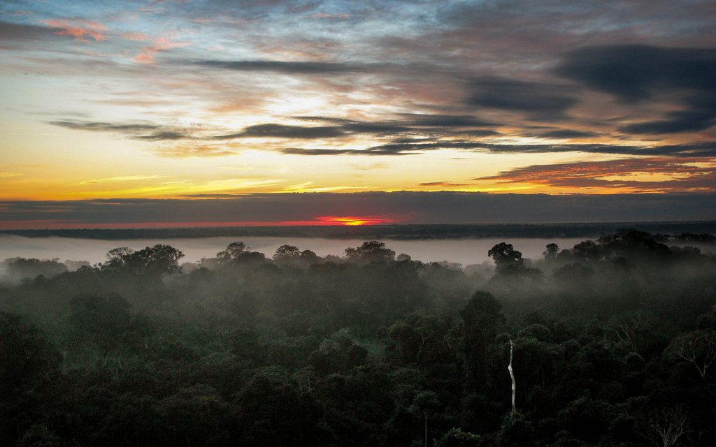 Beautiful sunrises over the Amazon await (c) Edwin Bellota
