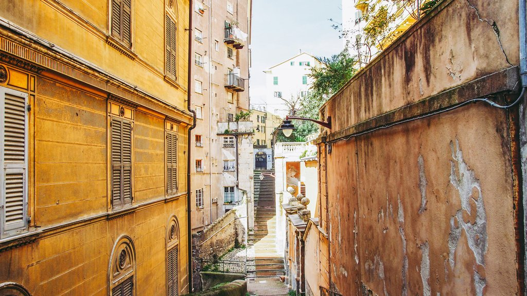 Genoa's old town