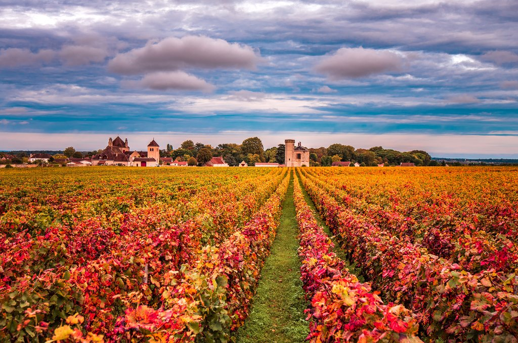 France - Burgundy - Beaune