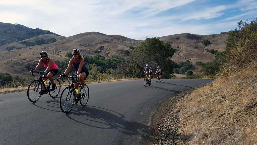 Enjoy one last ride through Sonoma County