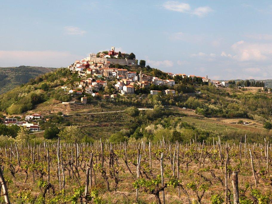 The hilltop town of Motovun
