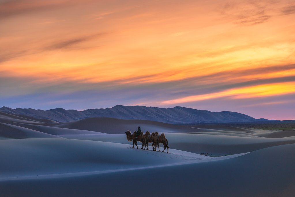 Ride a camel across the Singing Sand Dunes of the Gobi Desert