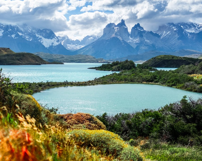 A contrast of colors in Torres del Paine