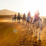 Merzouga Sunset Camel Ride & Desert Overnight