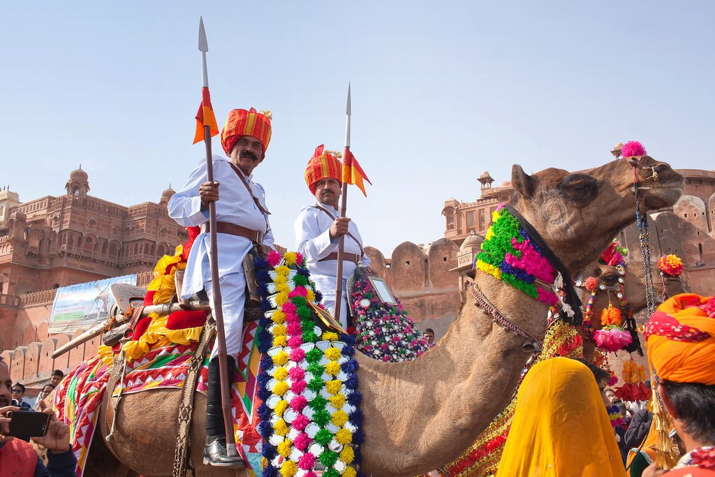 Go on a half-day camel safari through the Thar Desert