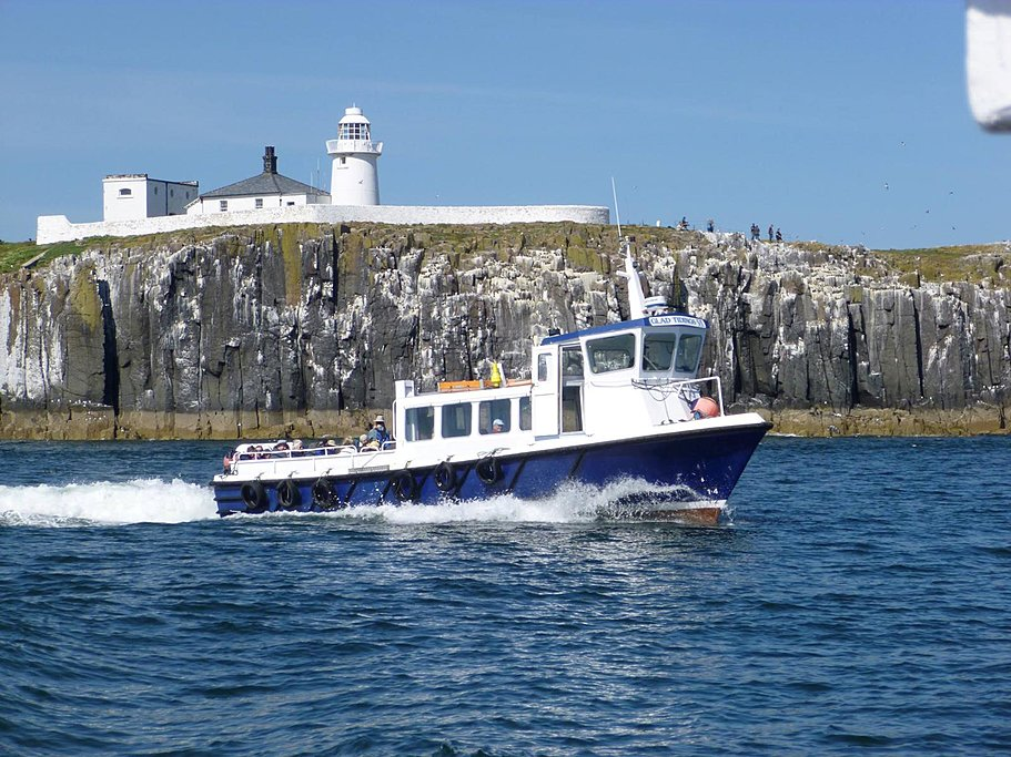 Farne Island Boat Tour