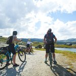Check out the island's attractions by bicycle