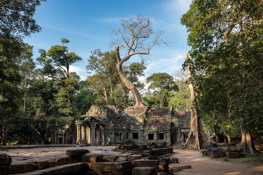 Left to the jungle, Ta Prohm is one of the most visually stunning temples in Angkor