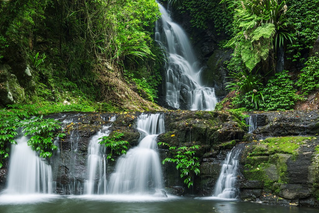 Australia - Lamington National Park - Waterfalls on Toolona Circuit