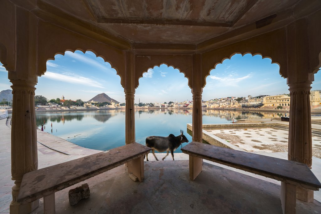 Pushkar Lake is a sacred pilgrimage site