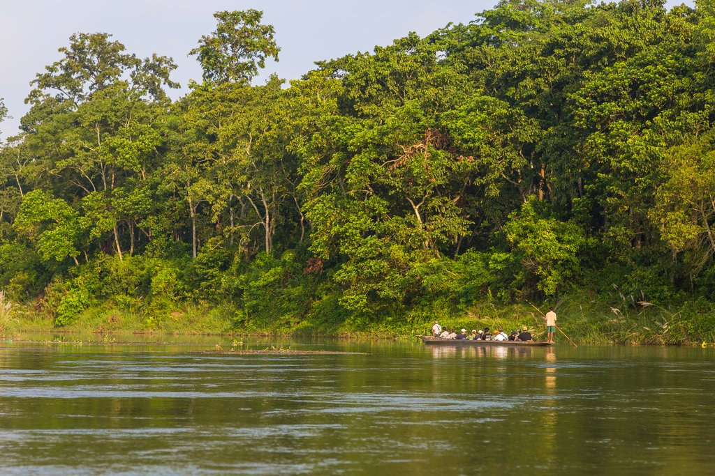 Wooden boats taking travelers down the Rapti river, Chitwan
