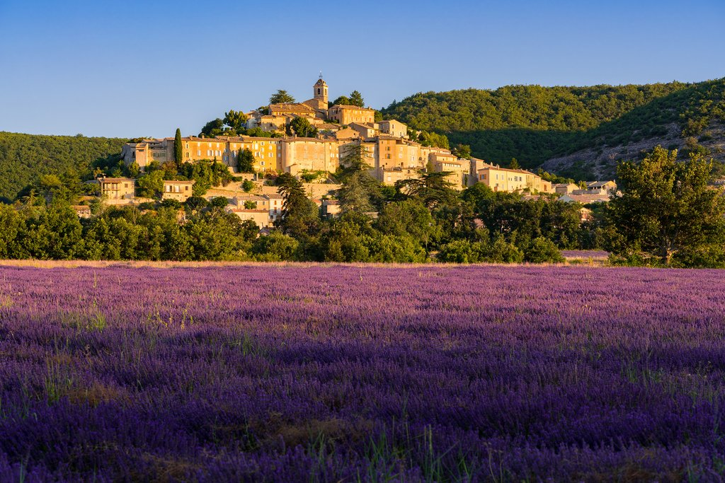 Drive along lavender fields and pass by medieval villages