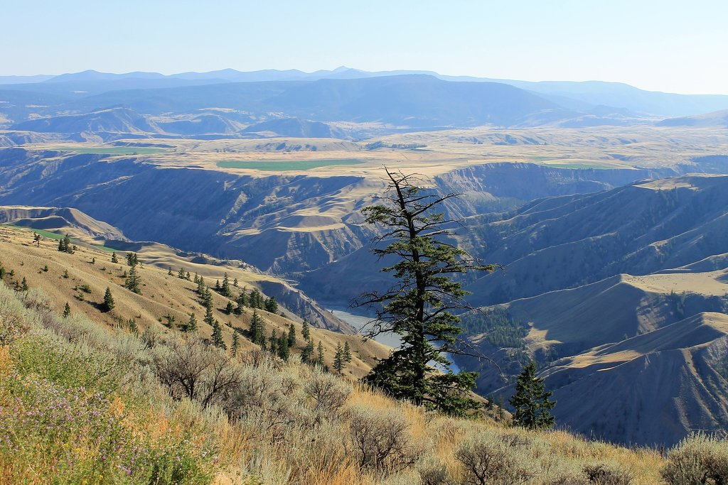 Landscape around the Chilcotin River