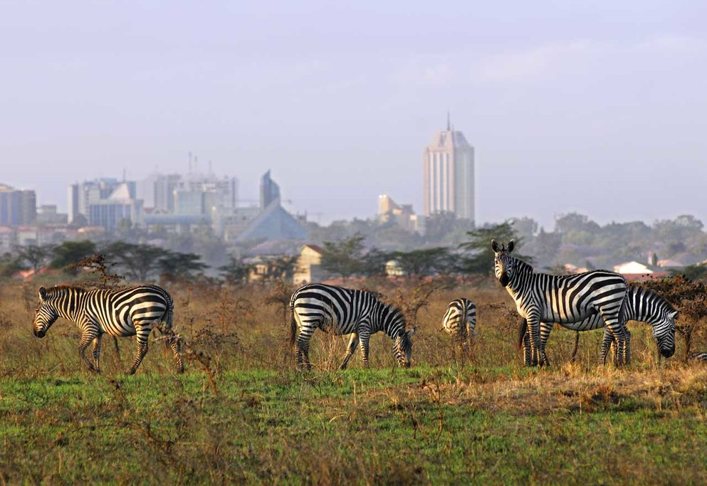 Amazing Nairobi National Park