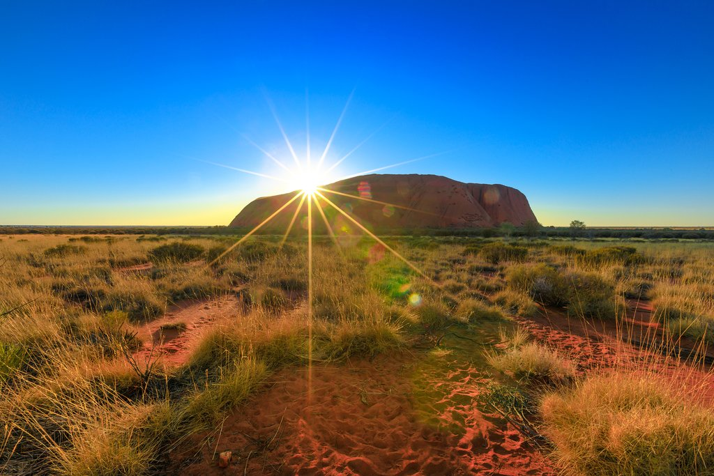 Watch the sunrise over Uluru and the Fields of Light