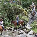 Horseback riding near Salento