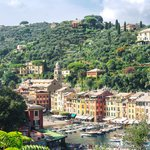 Colorful homes and fishing boats in Portofino
