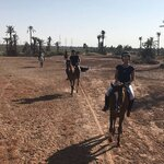 Riding Through the Desert and Palms