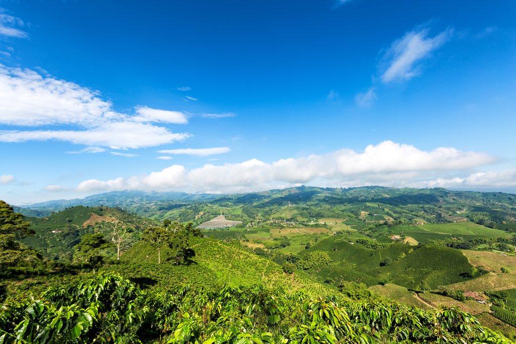 Return to Antioquia