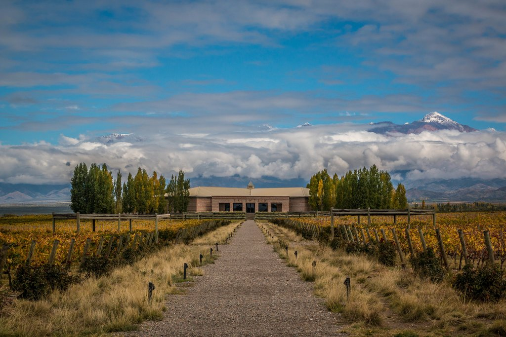 winery at Uco valley