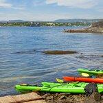 Eco Kayaking in Oslofjord